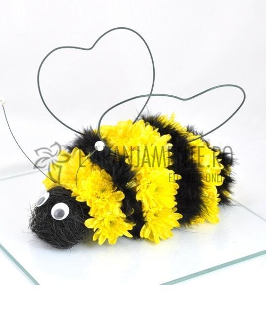 Albina din Flori