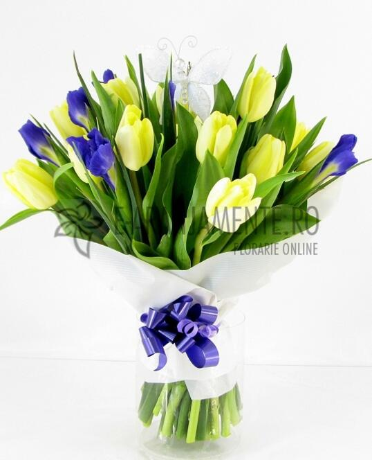 Lalele Si Iris