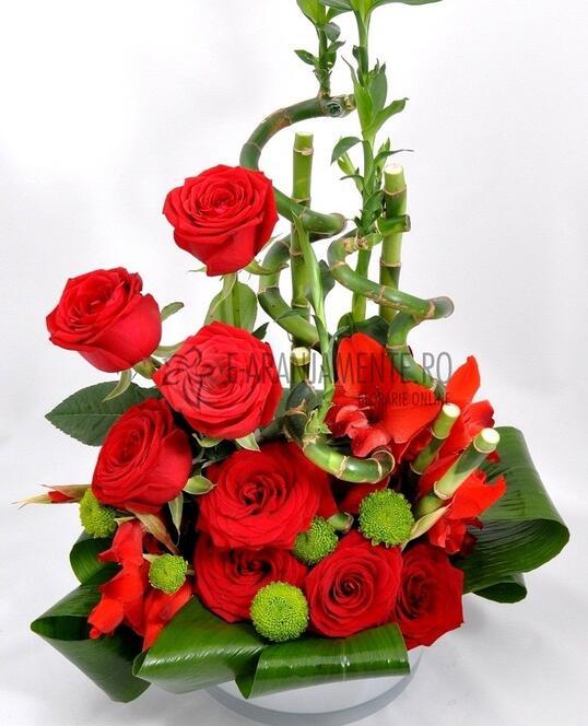 Trandafiri Si Bambus