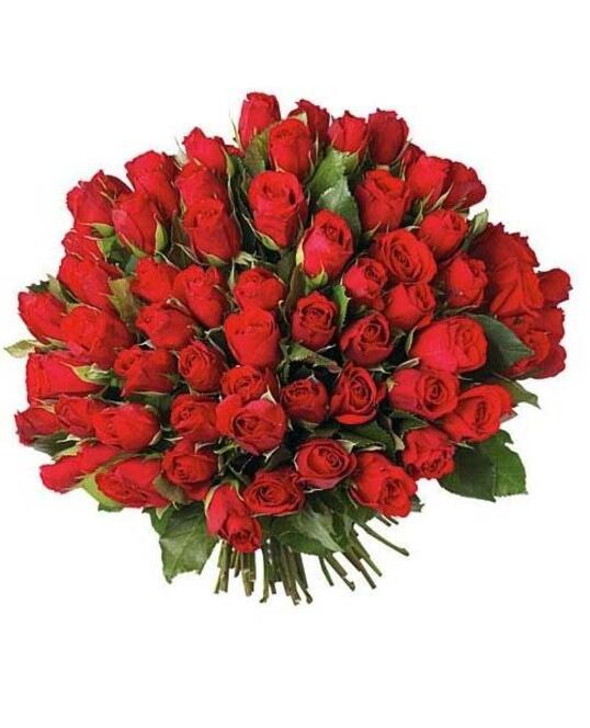 99 Trandafiri