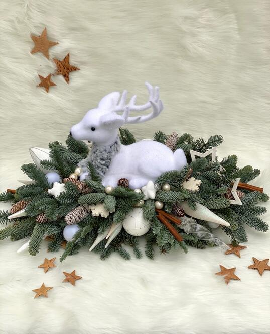 Hei Rudolf